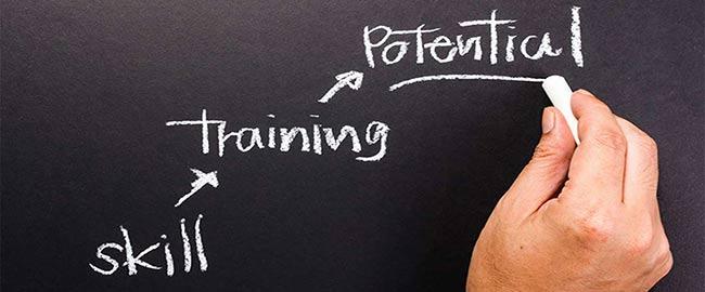 skill-training2
